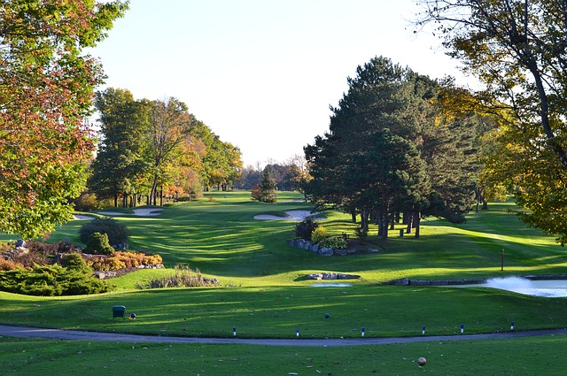 Looking For The Best Golfing Tips On The Web? You've Found Them!